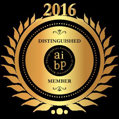 AIBP 2016 Distinguished Member